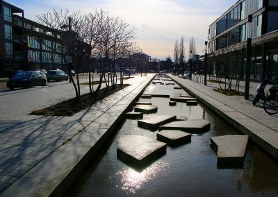 IMG_9833_Roombeek_site