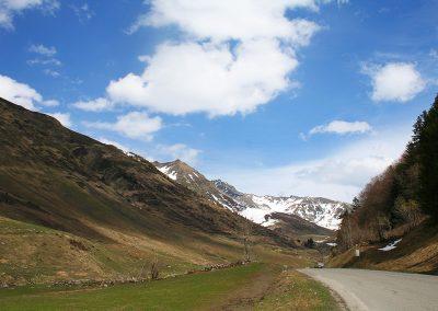 Pyreneeën_s