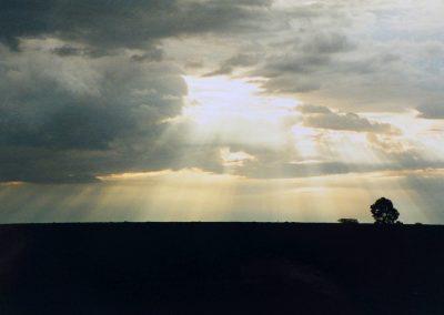 MasaiMara_avondlicht